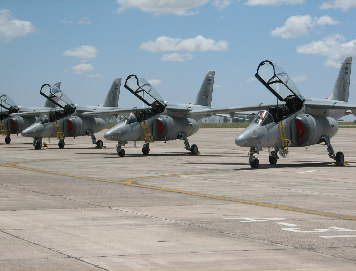 Argentinean Air Force Pampa Fighters